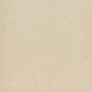 Gạch lát nền Đồng Tâm 1mx1m 100DB016-NANO
