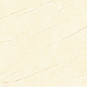 Gạch ốp tường Đồng Tâm 30x60 3060AMBER003