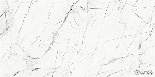Gạch lát nền Taicera 60x120 G12905