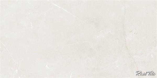 Gạch lát nền Taicera 60x120 GP12845